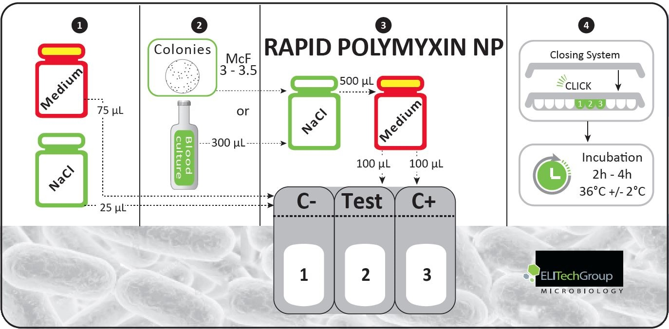 Rapid Polymyxin NP 1